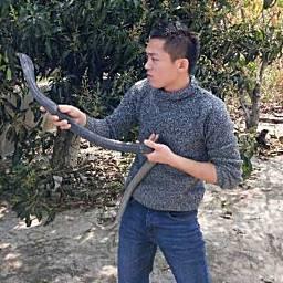 KK蛇王、阿思
