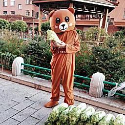 冬大大ʚ户外网红熊
